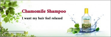 Sehat Chamomile Shampoo For Export