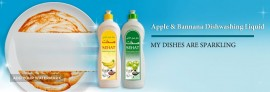 Sehat Dish Washing Liquid (Banana & Apple fragrance)