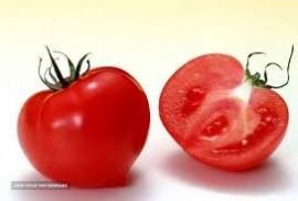 صادرت  گوجه فرنگی به عراق