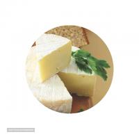 صادرات لبنیات پنیر کممبر با شیر بز